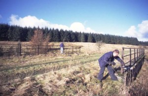 Founders Matt Stoddon & Len Ashton get to work on bridge 200 renovations in February 2002- photo Andy Stoddon